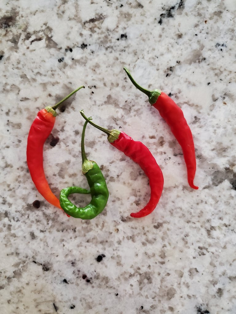 Hot peppers on counter